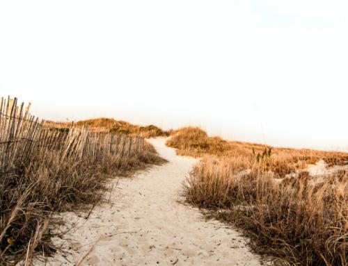 Warum das Zentrum ÜBERLEBEN im Testament bedenken?
